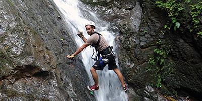 Resultado de imagen para 6 en 1 rainforest adventure